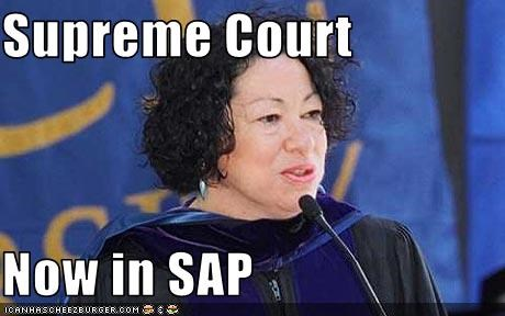 Supreme Court Now In Sap Cheezburger Funny Memes Funny Pictures