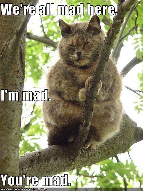 Youre Mad Im Back Big Mac 6ix9ine Meme Youtube