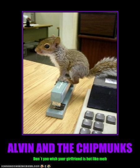 20 Adorable Chipmunk Memes Sayingimages Com