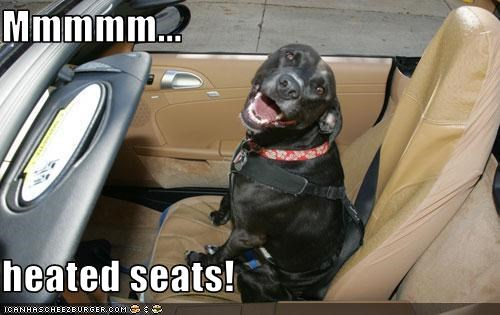 Mmmmm Heated Seats Cheezburger Funny Memes Funny Pictures