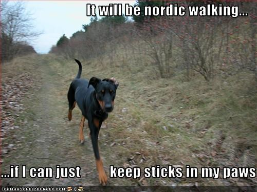 It Will Be Nordic Walking If I Can Just Keep Sticks In My