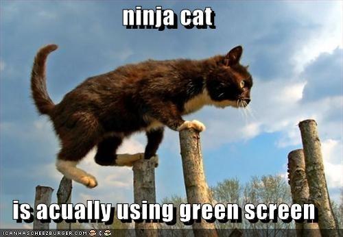 All Hail The Green Screen Queen Cnet