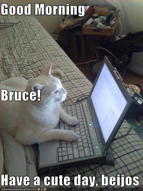 Good Morning Bruce Have A Cute Day Beijos Cheezburger Funny