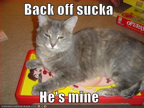 Back Off Sucka He S Mine Cheezburger Funny Memes Funny Pictures