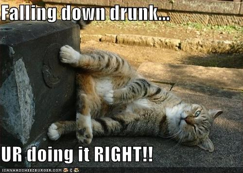 New Falling Down Stairs Meme Memes Man Memes Guy Memes Drunk Memes