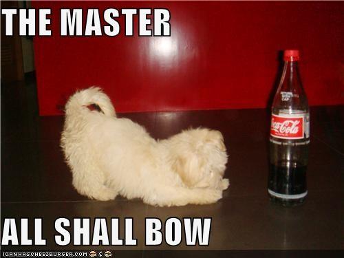 Pepsi Coke Cola Fail Meme Funny Memes