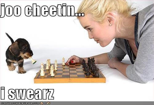 Chess Meme Template Memetemplatesofficial