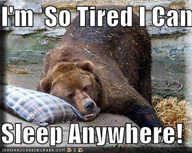 I M So Tired I Can Sleeo Sleep Anywhere Cheezburger Funny