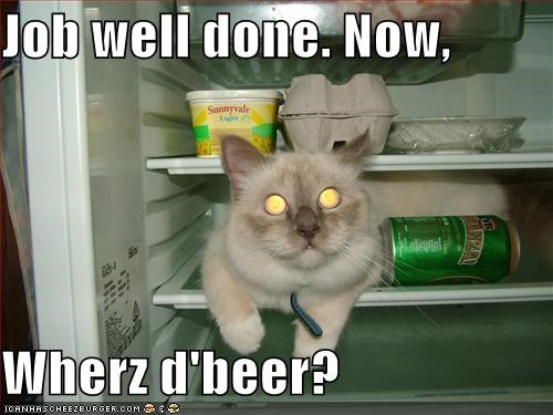 Image Result For All Done Meme Funny Animal Memes Funny Animal