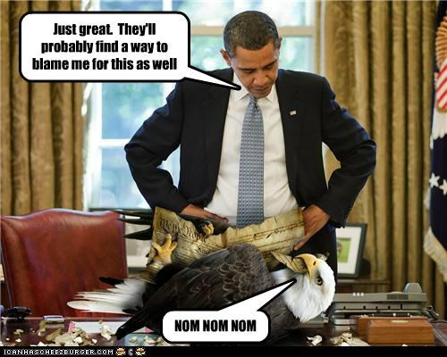 Politics Eagle Political Memes Cheezburger