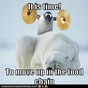 It Is Time To Move Up In The Food Chain Animal Comedy Animal