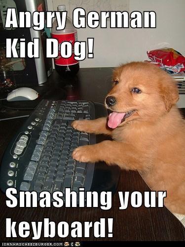 Angry Kid Memes