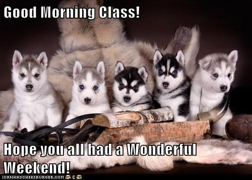 Good Morning Class Hope You All Had A Wonderful Weekend