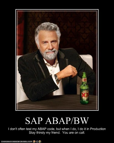 Sap Abap Bw Cheezburger Funny Memes Funny Pictures