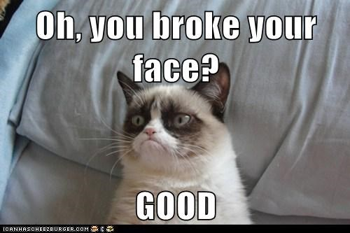 Oh You Broke Your Face Good Lolcats Lol Cat Memes Funny