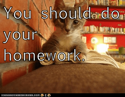 The Wisdom Of Homework Memes