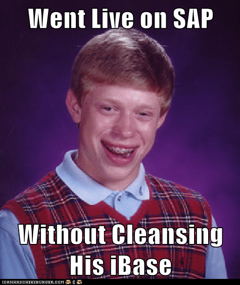 Went Live On Sap Without Cleansing His Ibase Memebase Funny Memes