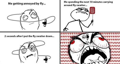 Memebase Fly Swatter All Your Memes In Our Base Funny Memes