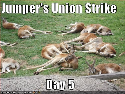 Jumper S Union Strike Day 5 Cheezburger Funny Memes Funny