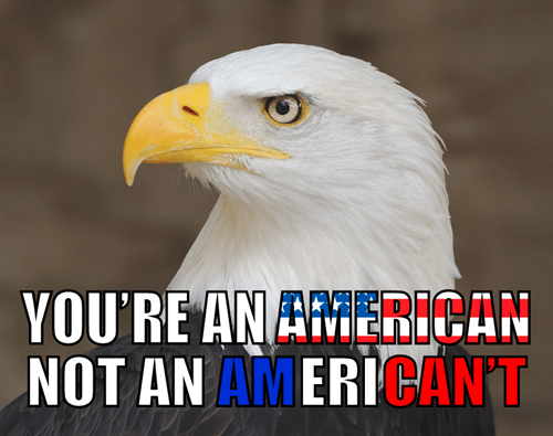Memebase Bald Eagle Page 2 All Your Memes In Our Base