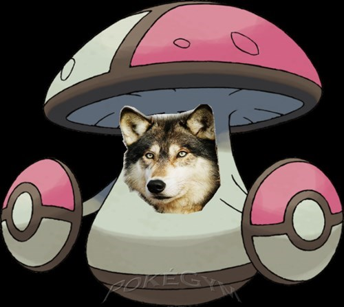 Pokememes The Wolf Among Us Pokemon Memes Pokemon Pokemon