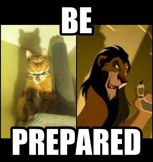 Cartoons Anime The Lion King Anime And Cartoon Gifs Memes