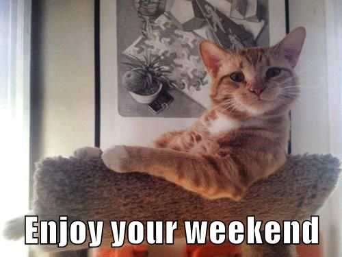 Enjoy Your Weekend Cheezburger Funny Memes Funny Pictures