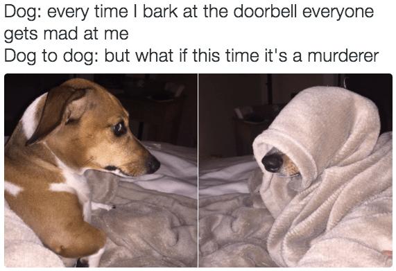 The Best Poor Memes Memedroid