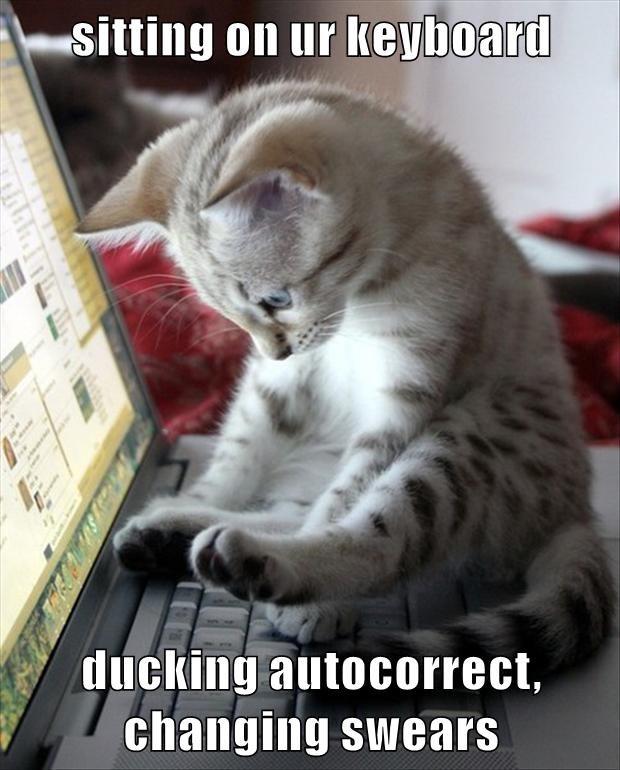 Autocorrect Rubber Ducky Meme 2 25 Inch Button You Ve Got Etsy
