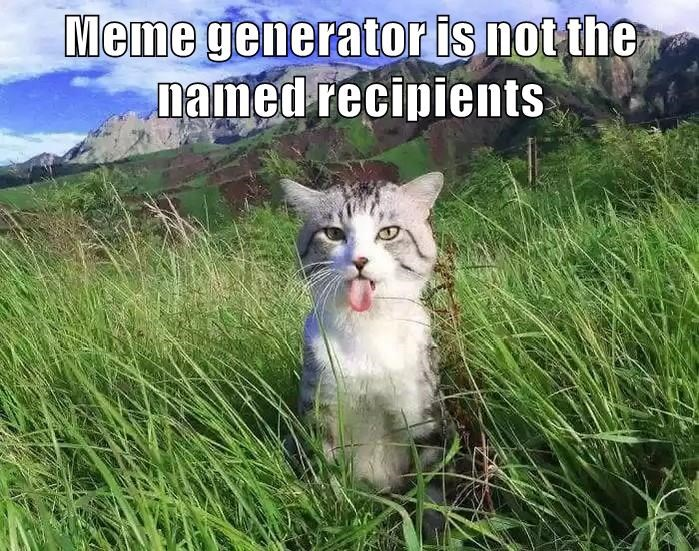 Learn React By Building A Meme Generator