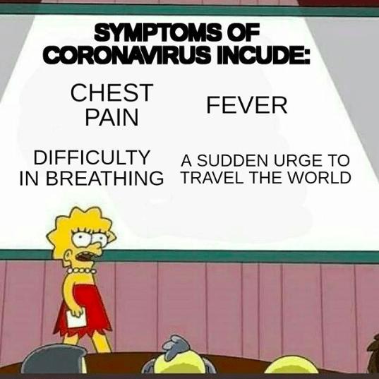 Memes That Roast People Who Travel With Coronavirus Memebase