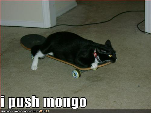 I Push Mongo Cheezburger Funny Memes Funny Pictures