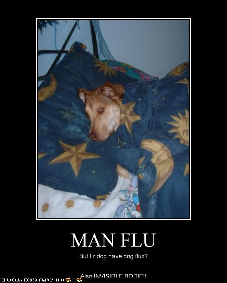 Man Flu Cheezburger Funny Memes Funny Pictures
