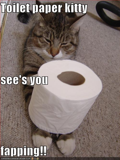 Toilet Paper Kitty See S You Fapping Cheezburger