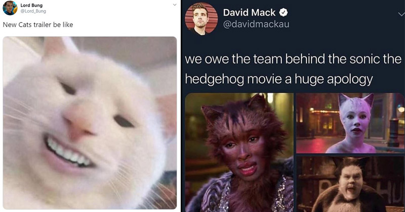 Dopl3r Com Memes Cats Movie Exists Everybody Lordbamboozle 2