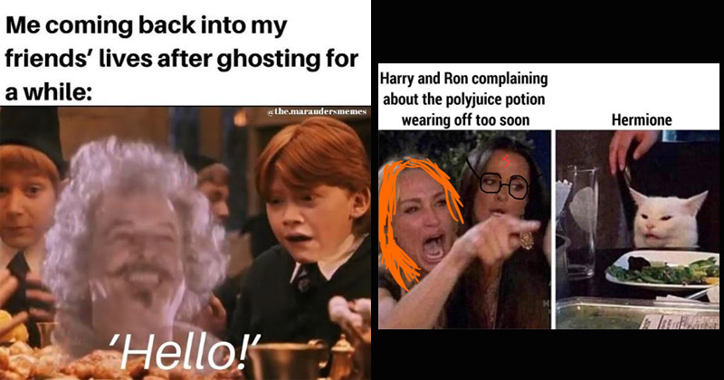 18 Very Dumb Harry Potter Memes For The Sirius Ly Obsessed