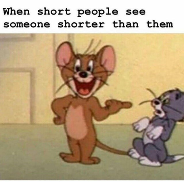 Memebase Tom And Jerry Memes All Your Memes In Our Base