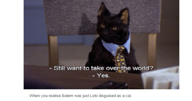 Funniest Salem The Cat Quotes From Sabrina The Teenage Witch