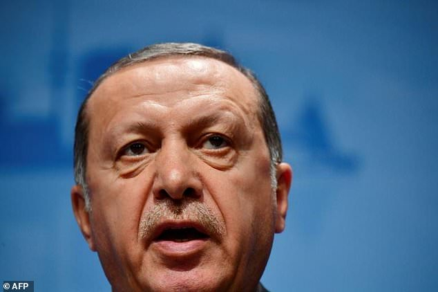 NATO member and EU membership hopeful Turkey had expected an outpouring of solidarity after the coup attempt one year ago aimed at ousting President Recep Tayyip Erdogan