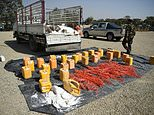 An Afghan security force personnel walks next to containers filled with explosive material after presenting it to the media at the National Directorate of Security (NDS) headquarters in Kabul on October 15, 2017