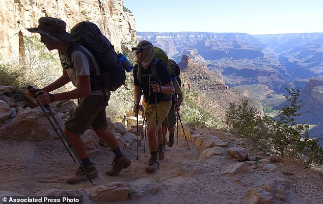 The National Park Service is floating a proposal to increase entrance fees at 17 of its most popular sites next year. Pictured, the Grand Canyon along the Bright Angel Trail