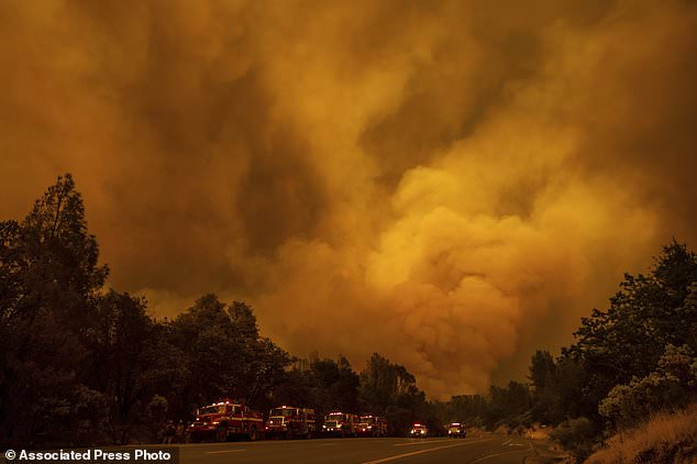 The Carr Fire burns along Highway 299 in Shasta, Calif., on Thursday, July 26, 2018.