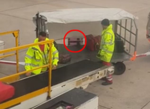She watched on as it bounced off the cart and slid onto the tarmac. She says the case was damaged when she retrieved it
