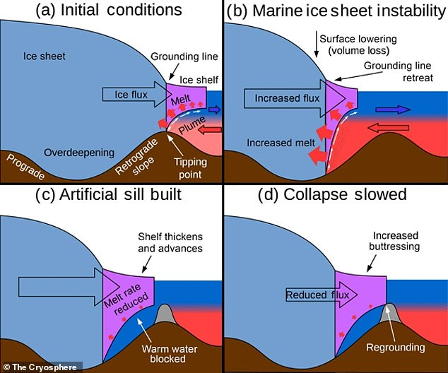 One idea would be to build a wall underwater to block warm water reaching an ice shelf's base, which is very sensitive to melting. Pictured is the potential 'regrounding' (in grey)