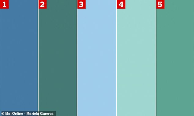 Is It Green Or Blue Baffling Colour Illusion Tests Users Daily Mail Online