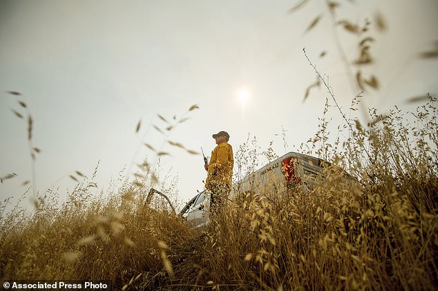 Feuerwehrmann Rob Gore aus Canberra, Australien, bemannt einen Aussichtspunkt beim Kampf gegen den Mendocino Complex Fire am Mittwoch, 8. August 2018, im Mendocino National Forest, Kalifornien. Feuerwehrmänner aus Australien und Neuseeland helfen Kalifornien, die diese Woche in der Mendocino Complex Feuer nach einem 8,600 Meilen (13,840 Kilometer) Flug und zweistündiger Busfahrt. (AP Foto / Noah Berger)