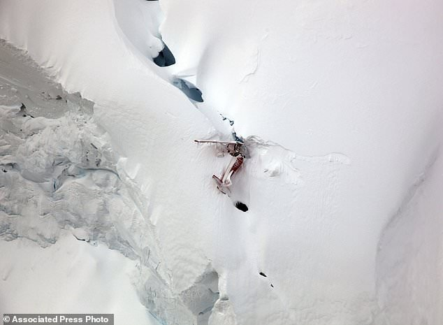 The aircraft is broken in half behind the wing, and the tail section of the fuselage is pulling down the aircraft toward Kahiltna Glacier 3,500 feet (1067 meters) below