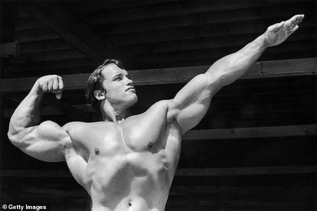 Initial allegations: Schwarzenegger apologized for 'misbehaving with women' after groping allegations were made public during the California gubernatorial recall election in 2003; the body building champion is pictured in 1966