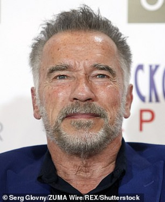 Natural look: The Terminator star proudly flaunted his salt-and-pepper tresses and close-cropped beard, showing that he is happy to age gracefully