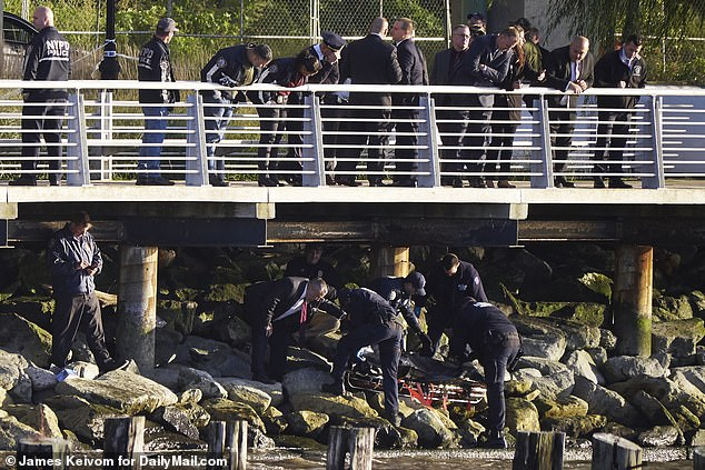 The bodies of the two women that were bound together by duct tape washed up from New York's Hudson River on Wednesday. Police are seen here removing one of the bodies